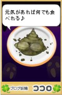 Kokoro51240