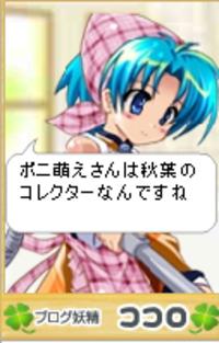 Kokoro5162_3